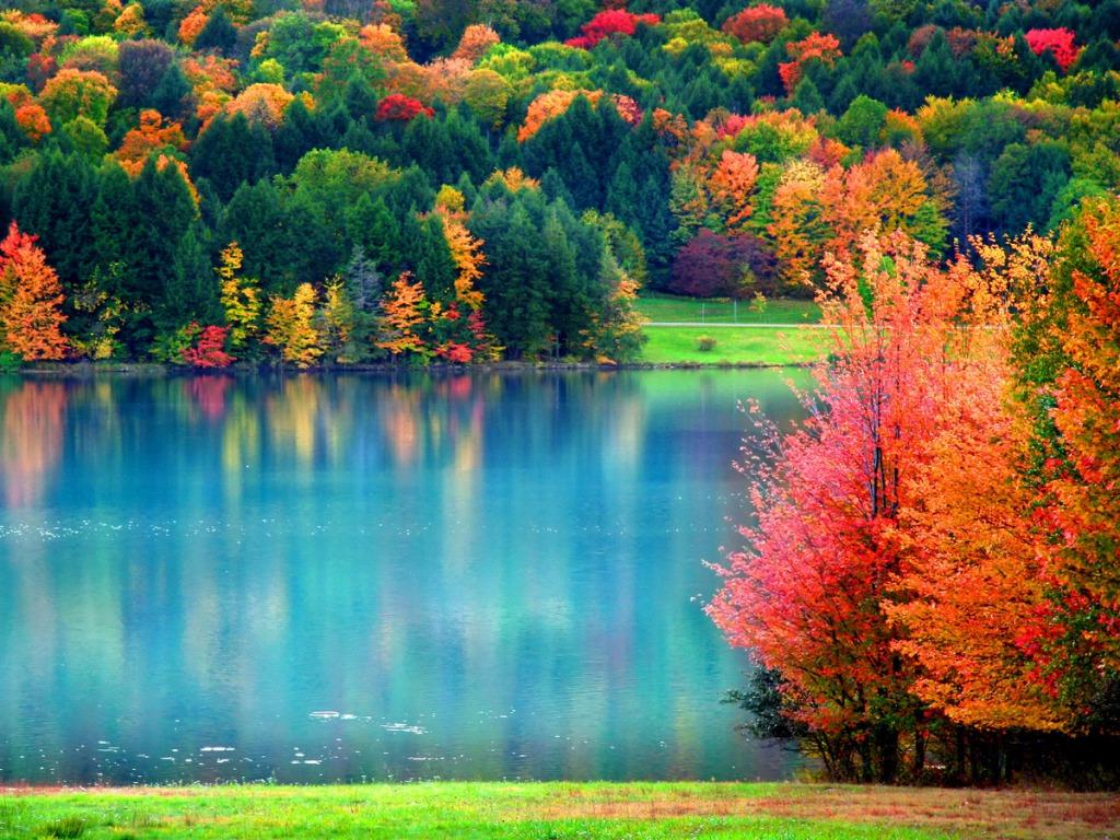 fall wallpaper 15885