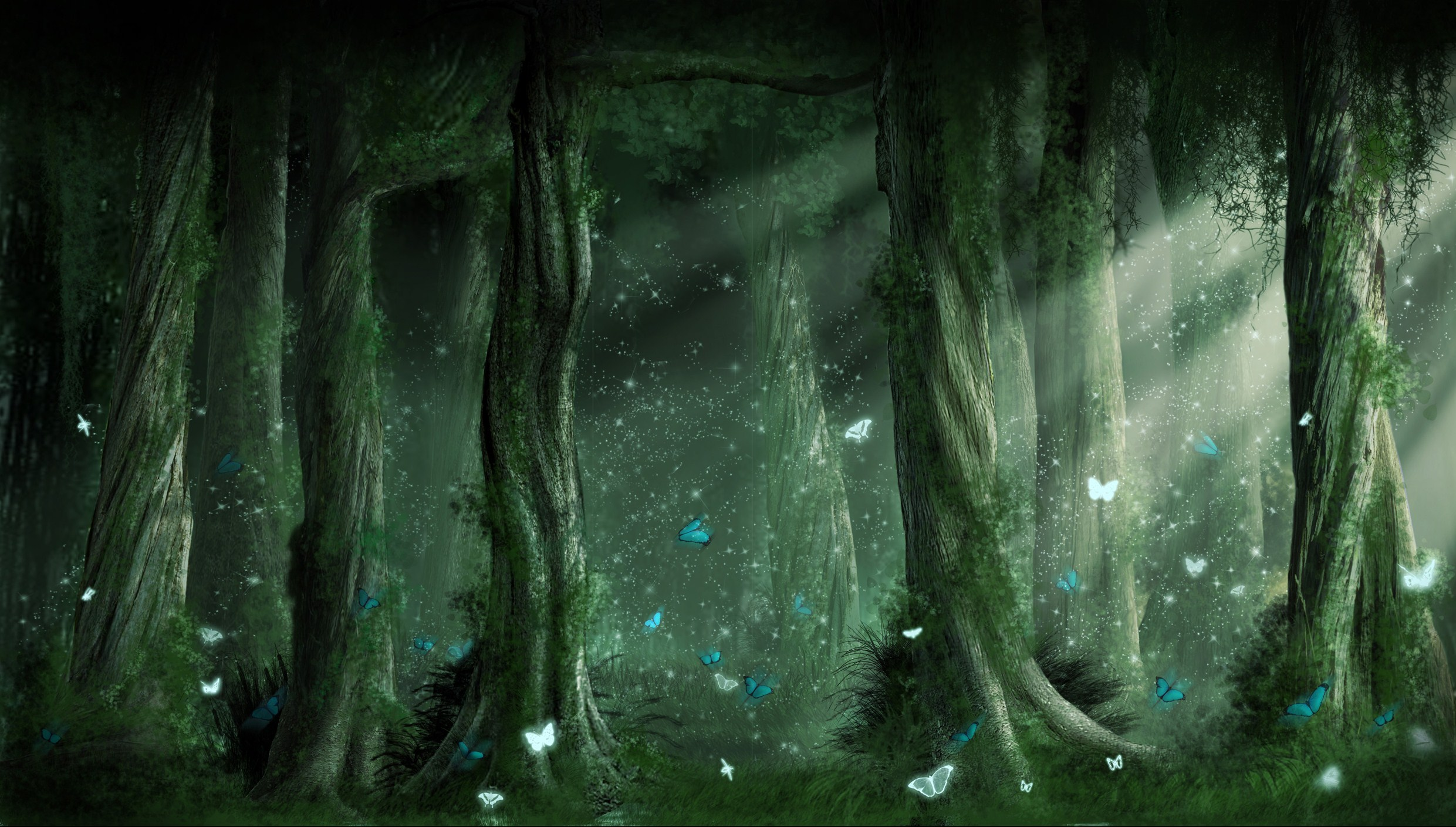 forest fantasy background 18575 2481x1409 px ~ hdwallsource