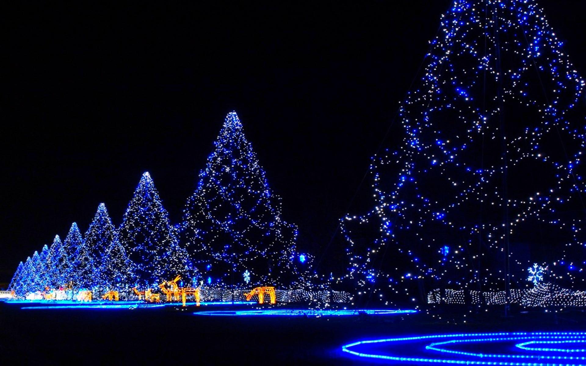 christmas neon lights hd - photo #43