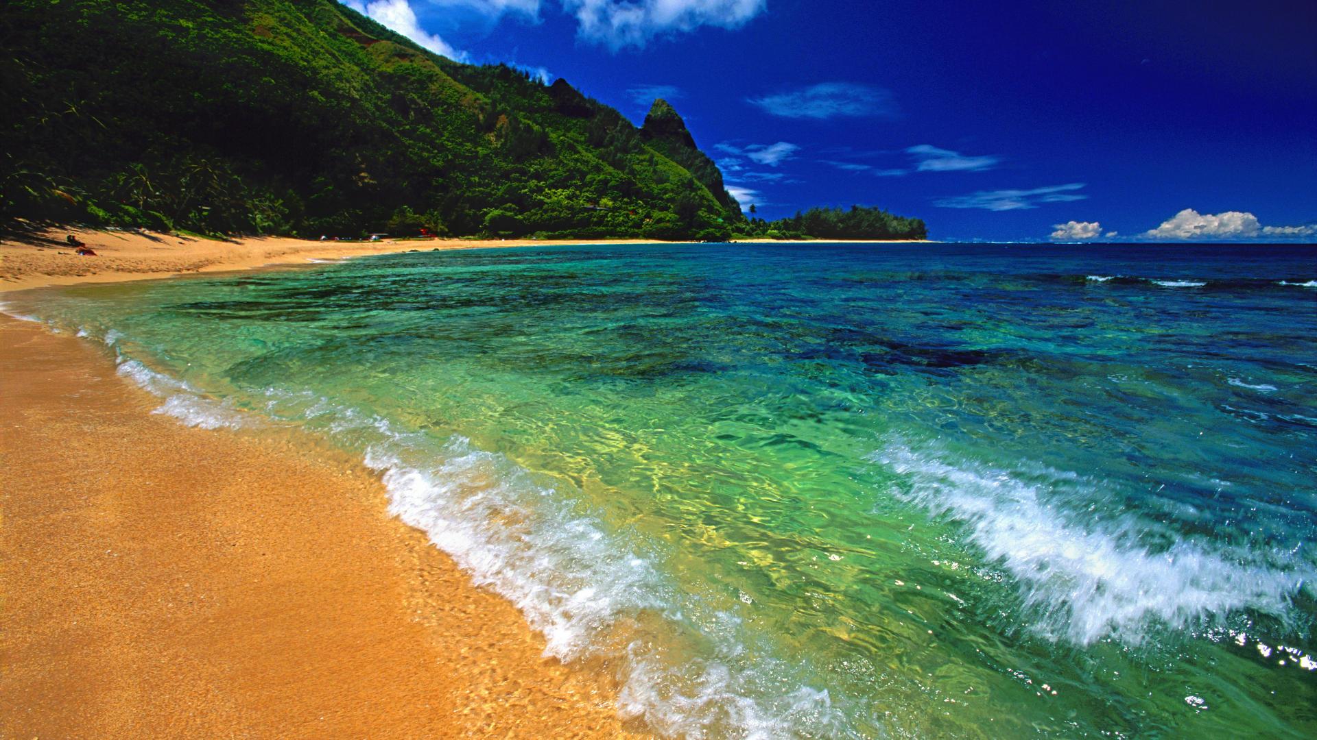 hawaii 20262