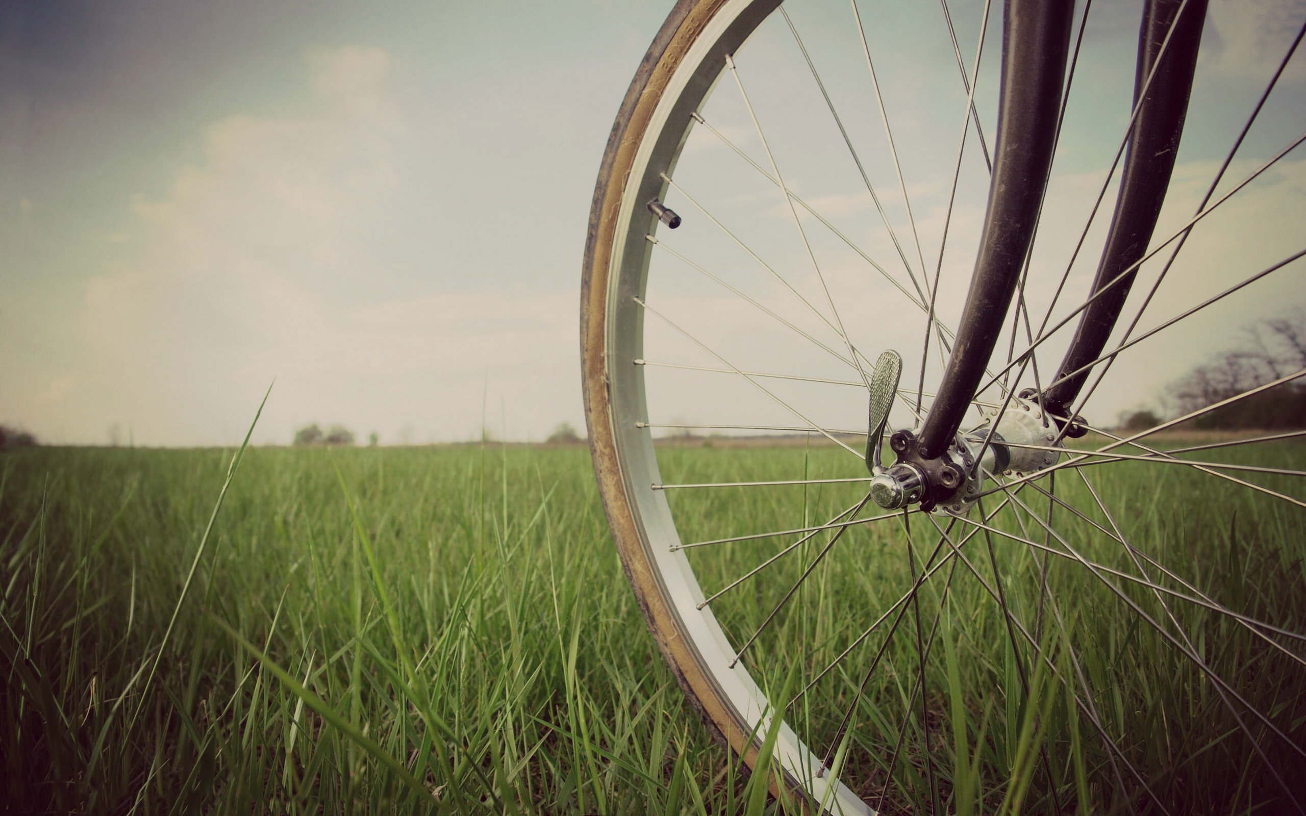 lovely bike wheel wallpaper 44480