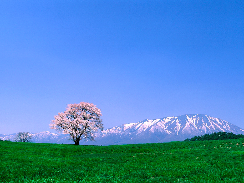 mountain wallpapers 12278