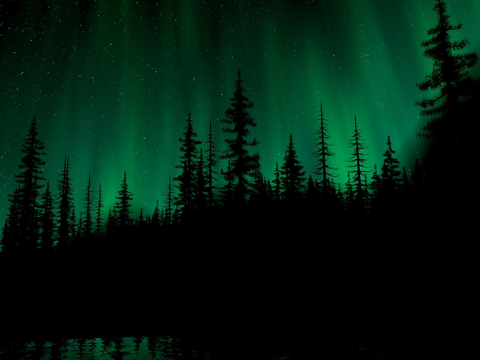 northern lights 21159