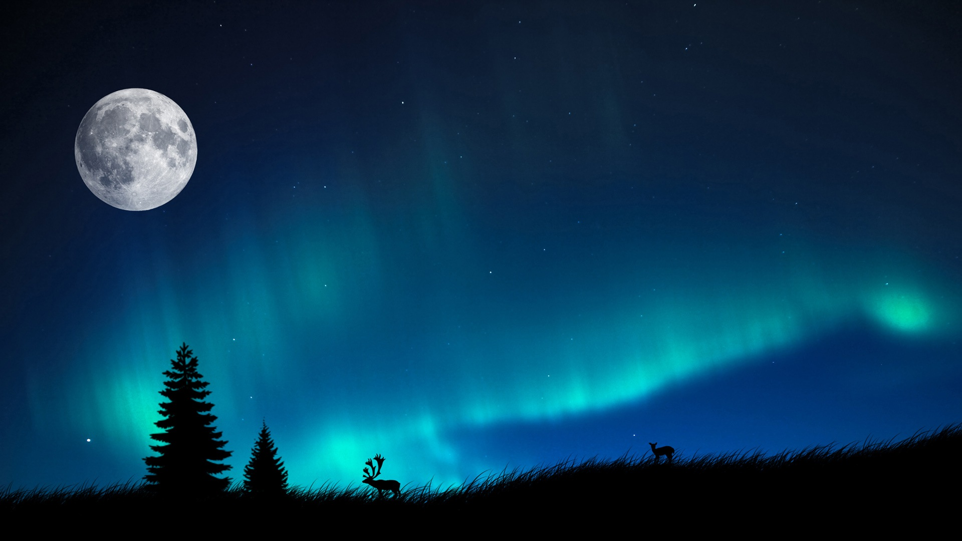 download northern lights 21160 1920x1080 px high definition wallpaper