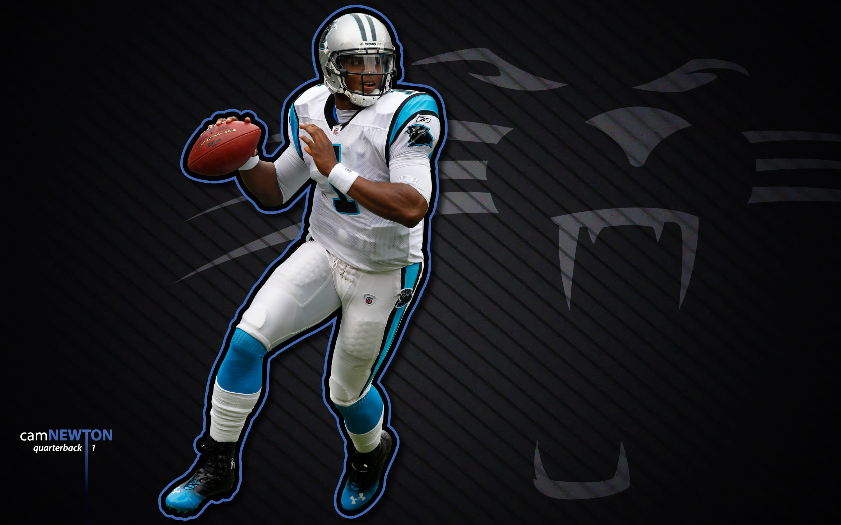 panthers wallpaper 14569