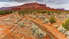 Amazing Desert Wallpaper 41778