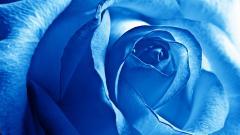 Blue 27727