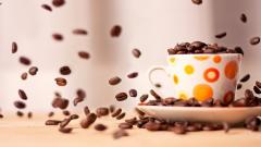 Coffee Wallpaper 16429