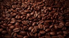 Coffee Wallpaper 16437
