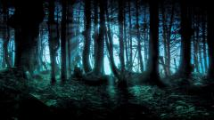 Forest Backgrounds 18577
