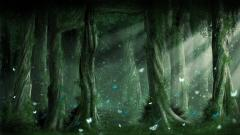 Forest Fantasy Background 18575