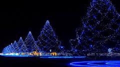 Free Christmas Lights Wallpaper 24370