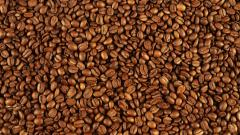 Free Coffee Wallpaper 16431