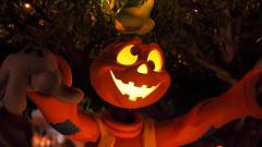 Halloween Close Up 39538