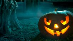 Halloween Close Up Wallpaper 39539