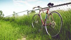 Lovely Bicycle Wallpaper 36723