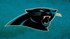 Panthers Wallpaper 14567