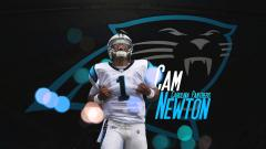 Panthers Wallpaper 14570