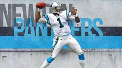 Panthers Wallpaper 14571
