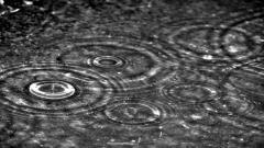 Rain Wallpaper 5988