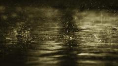 Rain Wallpaper 5989