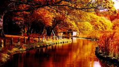 River Wallpaper 16005