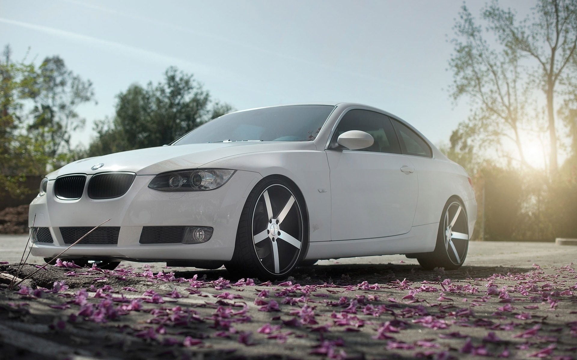 awesome bmw 3 series wallpaper 44679