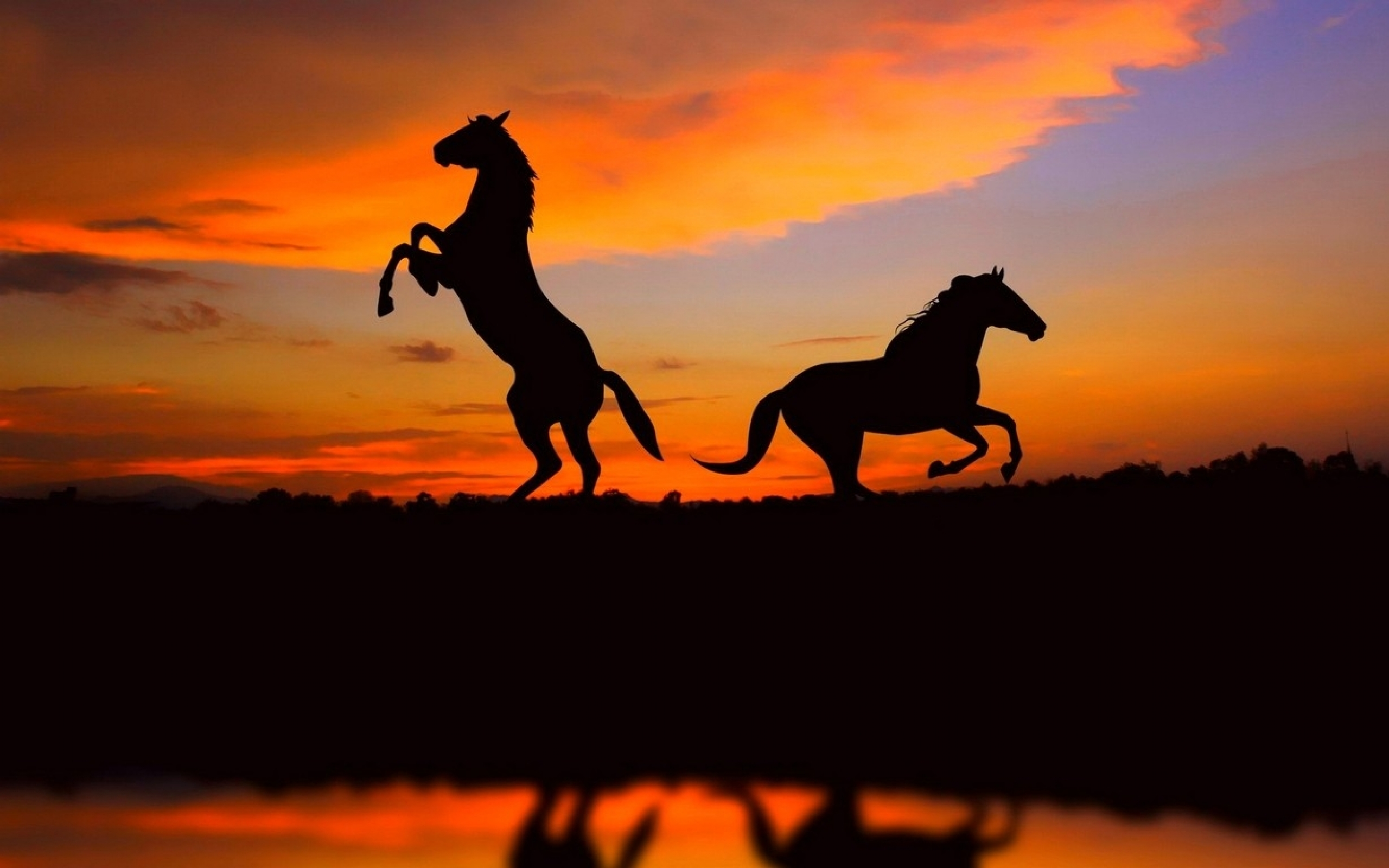 awesome sunset silhouette wallpaper 38079