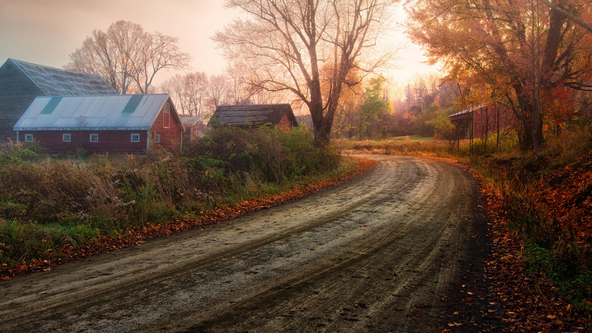 beautiful country road 15204