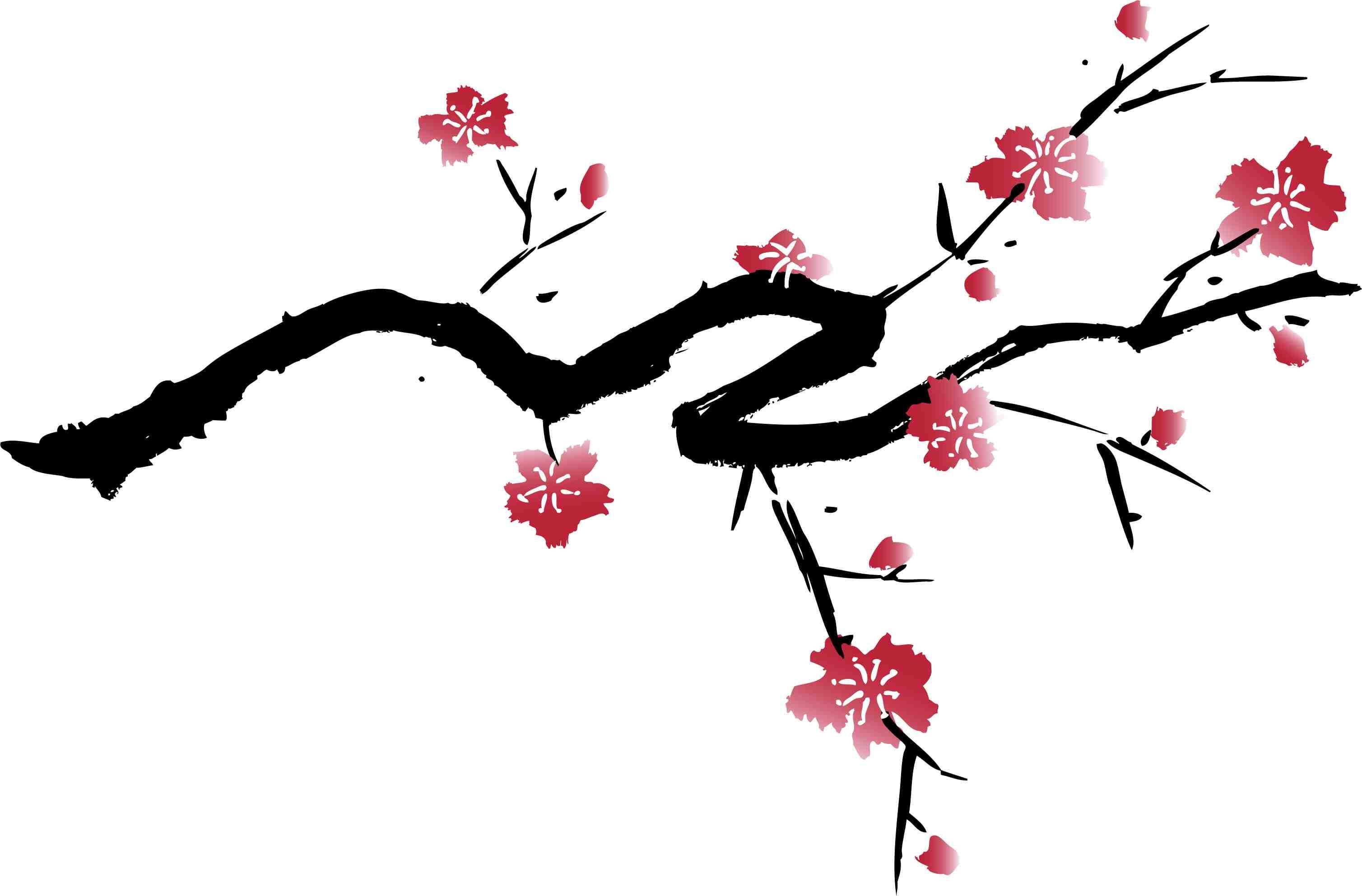 cherry blossom 8881