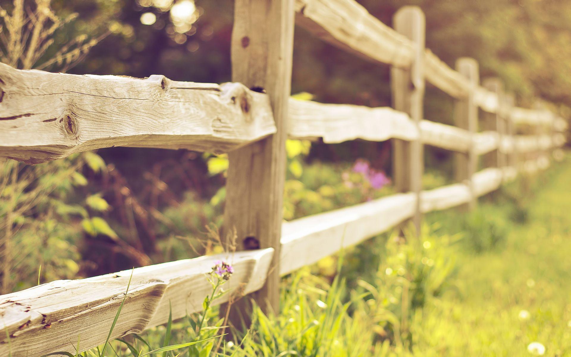 cute fence 31694