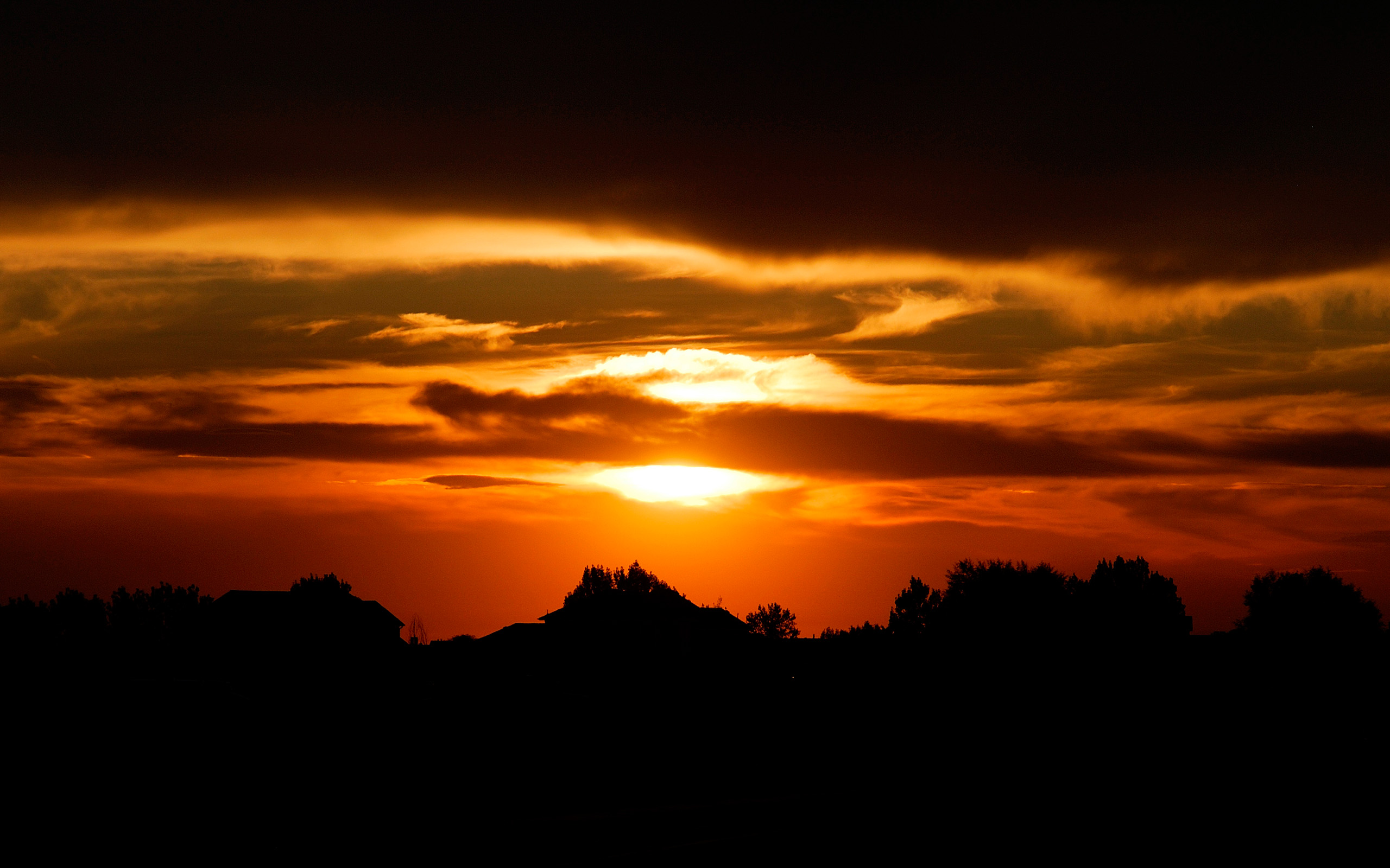 free sunset silhouette wallpaper 38080