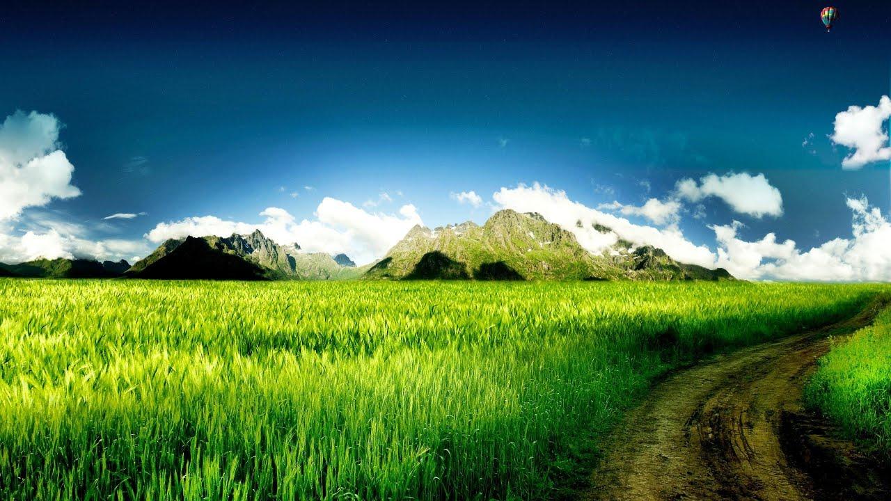 green landscape 16040