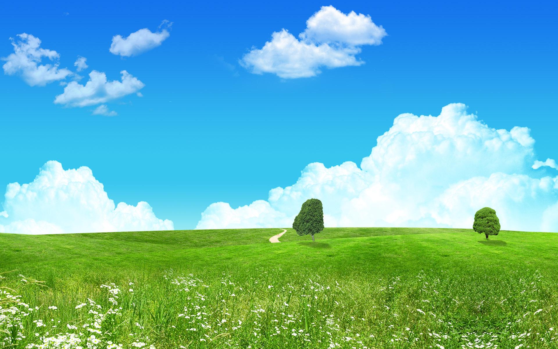green landscape 16047
