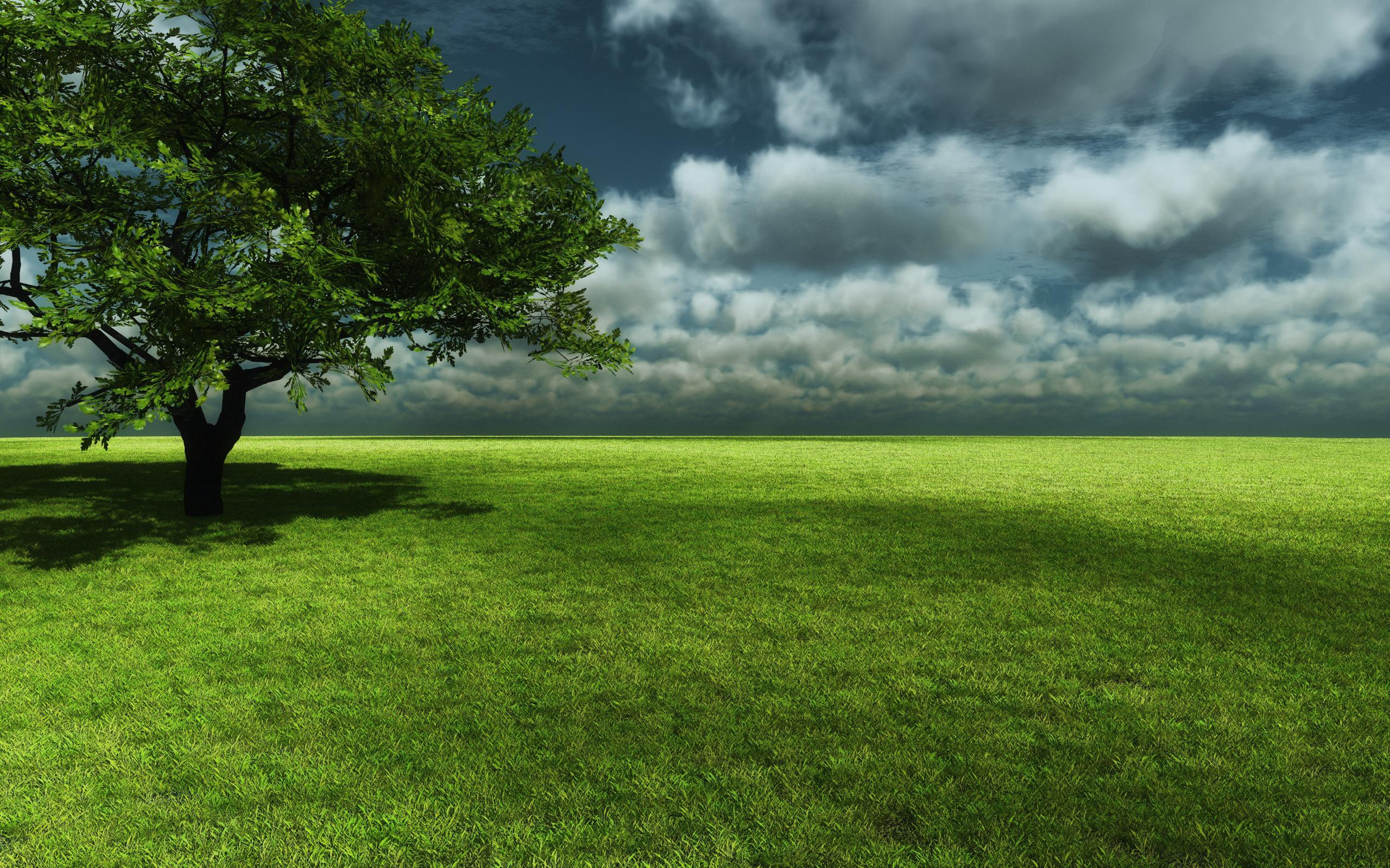 green landscape 16049