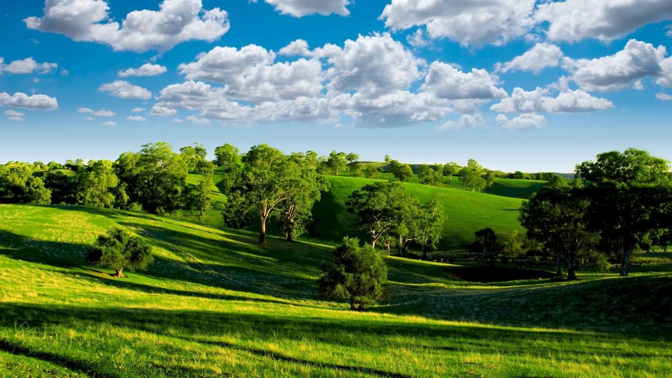 Green landscape 16051 1366x768 px for Landscape pictures