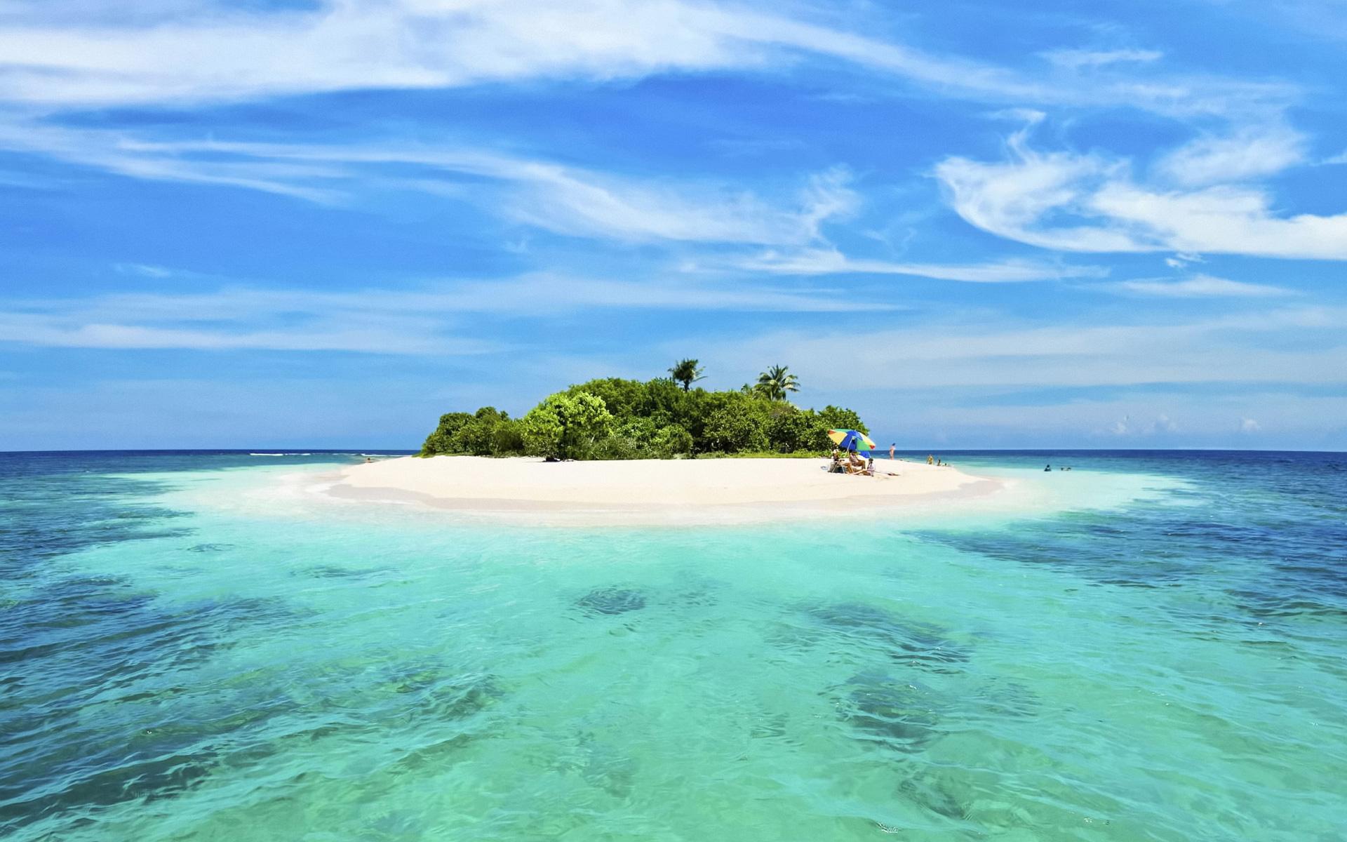 Ocean Art Contest Winners 2015Underwater Photography Guide