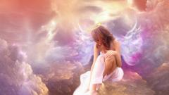 Angel Wallpaper 13203