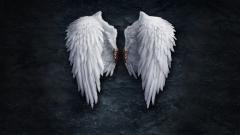 Angel Wallpaper 13211