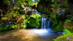 Beautiful Falls Wallpaper 38856