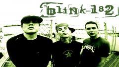 Blink 182 14908