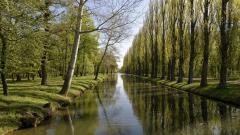 Canal Wallpaper 36742