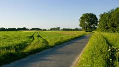 Country Road Wallpaper 15218