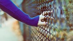 Cute Fence Wallpaper 31686