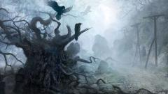Fantasy Pictures 8852
