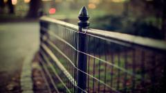 Fence Wallpaper 31681