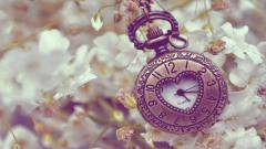 Lovely Pocket Watch Wallpaper 45050