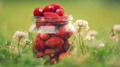 Lovely Strawberries Wallpaper 38825