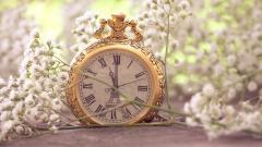 Pocket Watch Wallpaper 45051