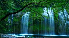 Pretty Falls Wallpaper 38855